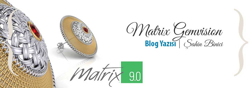 Matrix Gemvision
